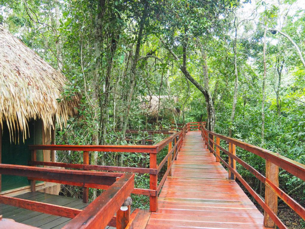 hotel de selva manaus