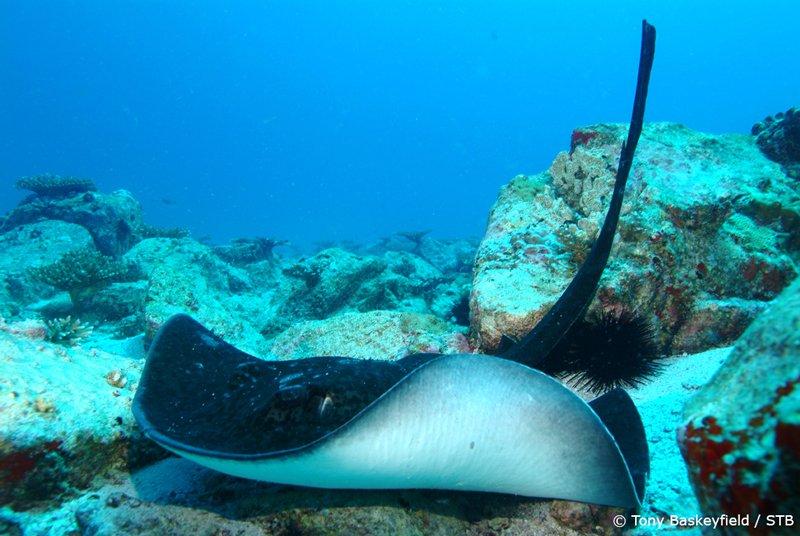 o que fazer em Seychelles